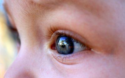Ирисовата диагностика  в услуга на детското здраве