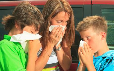 Овладей алергията с природни средства
